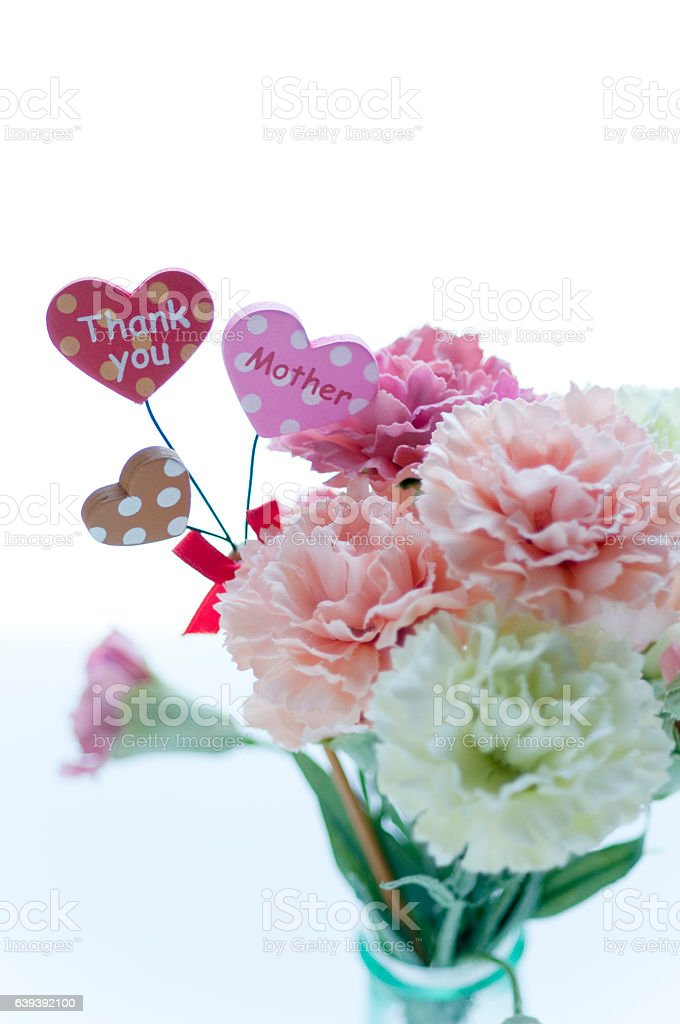 Carnation for Mother's Day stock photo