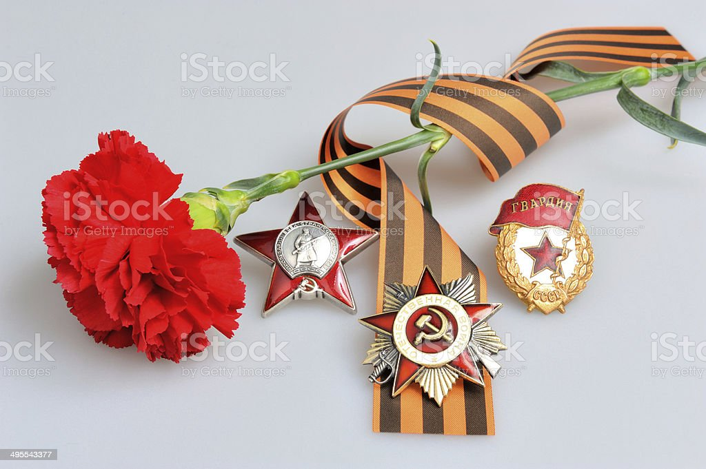 Carnation with Saint George ribbon and miltary orders on gray stock photo