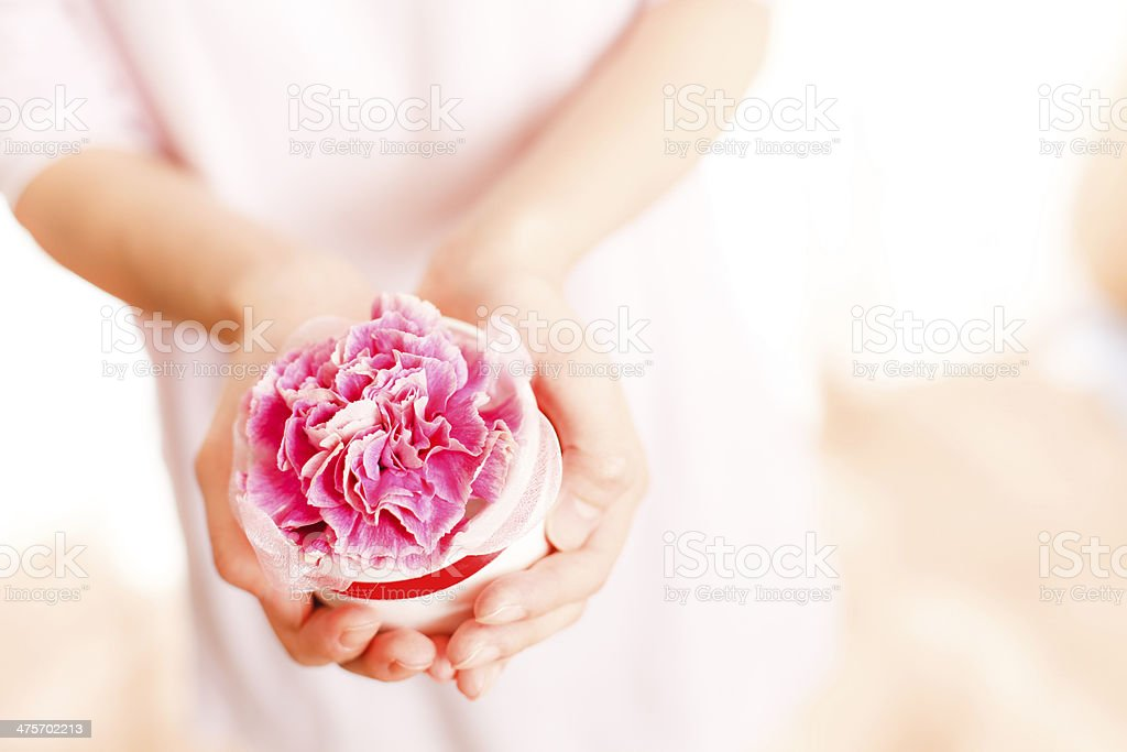 Carnation?Mother's Day stock photo