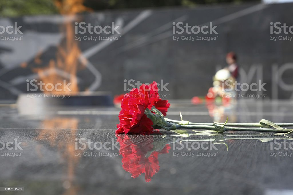 Carnations at eternal fire. stock photo