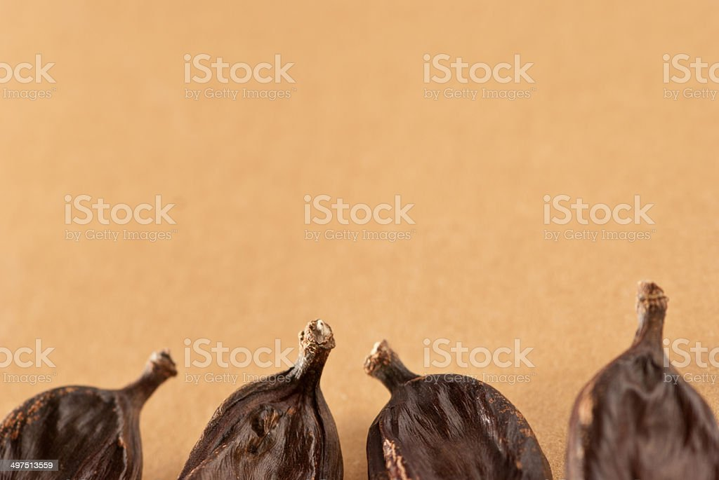 carob, Ceratonia siliqua royalty-free stock photo