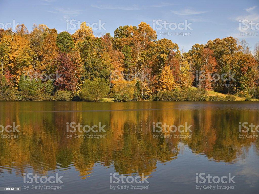 Carolina Fall royalty-free stock photo