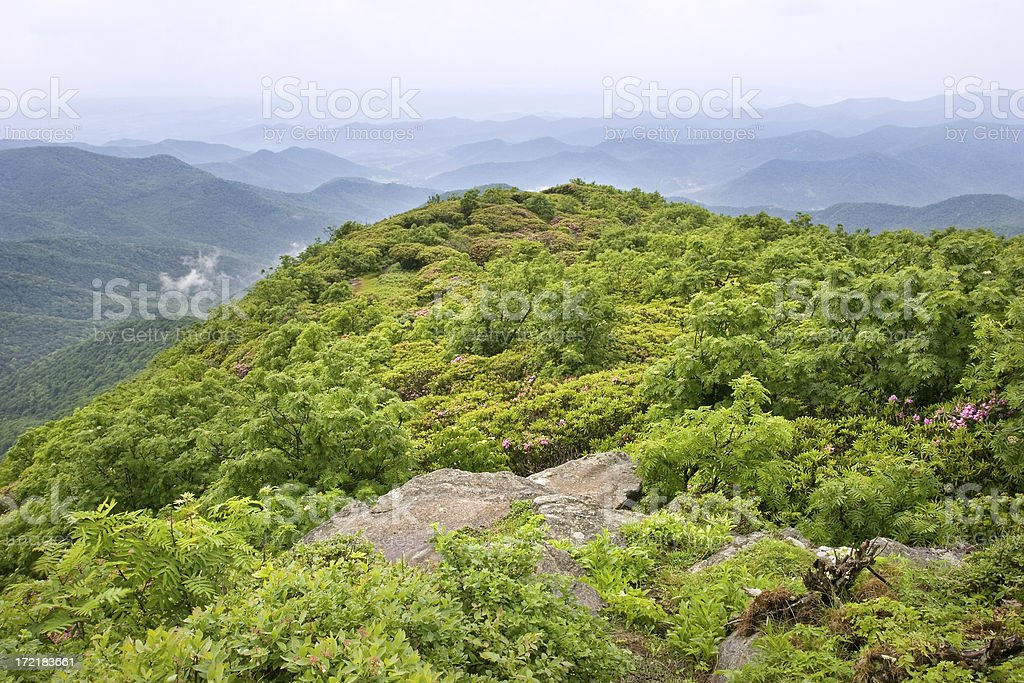 Carolina Mountain Top stock photo