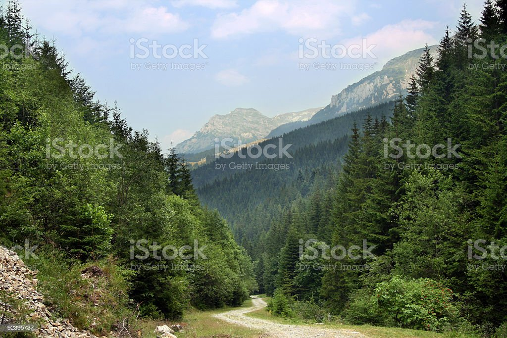 Carpathian Mountain royalty-free stock photo