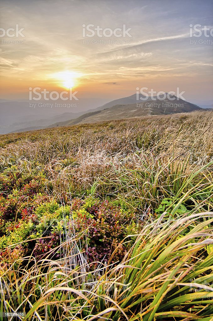 Carpathian mountains royalty-free stock photo