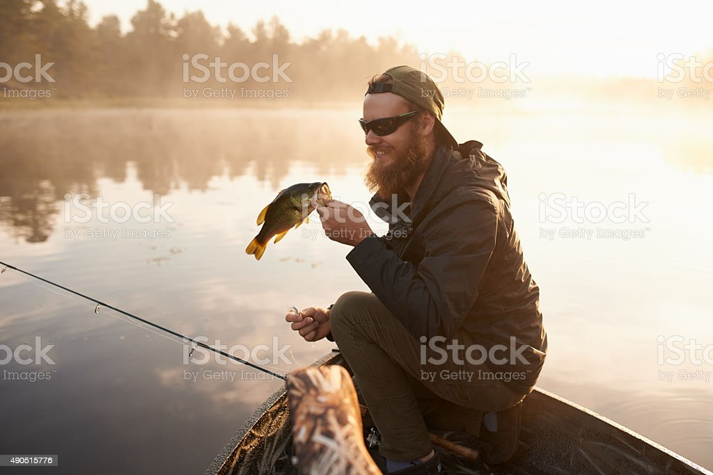 Carpe diem…seize the fish stock photo