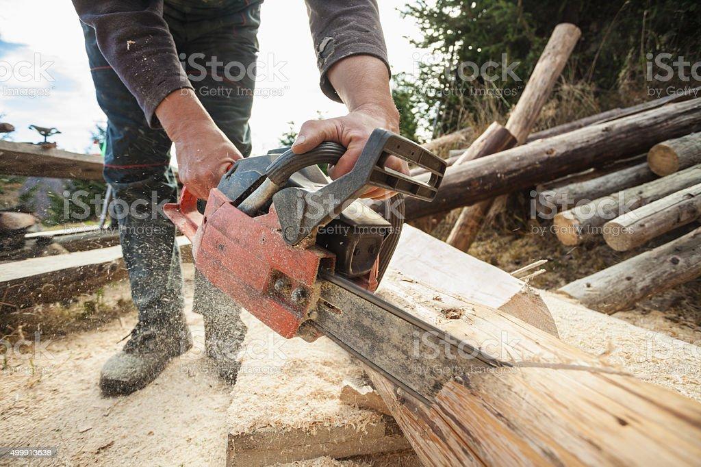 Carpenter cutting fir log using chainsaw - closeup stock photo