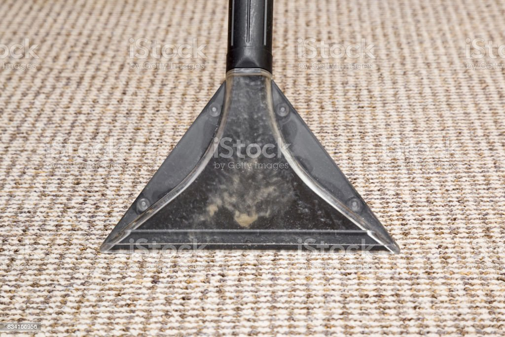 Carpet chemical cleaning with professionally extraction method. Early spring cleaning or regular clean up. stock photo