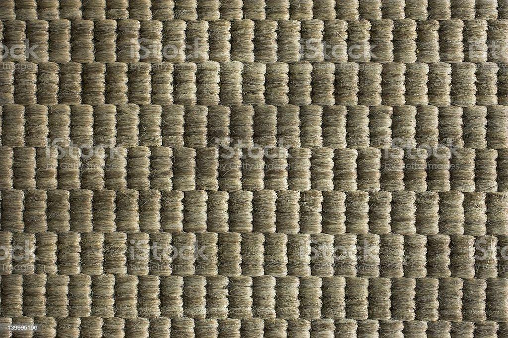 Carpet Diem royalty-free stock photo