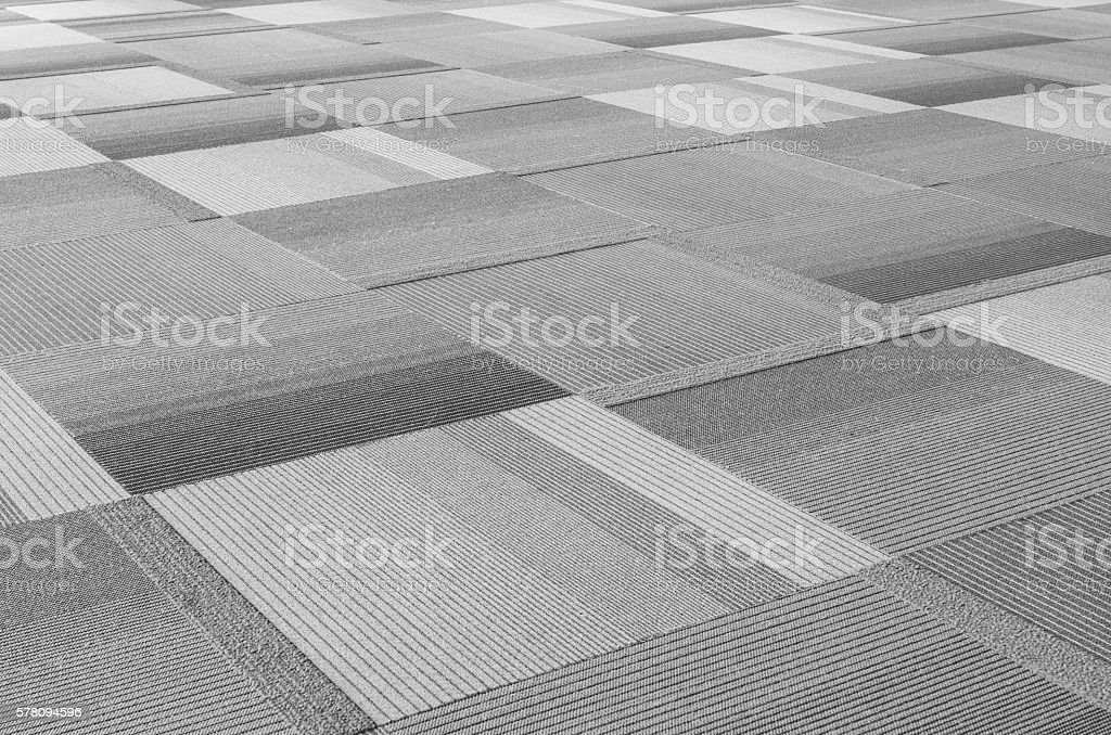 Carpet floor in public hall stock photo