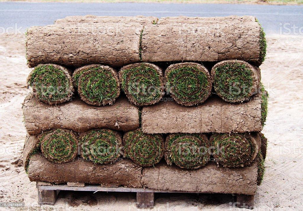 Carpet of turf stock photo