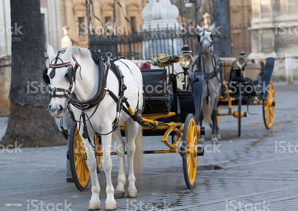 carriage Andalusian royalty-free stock photo
