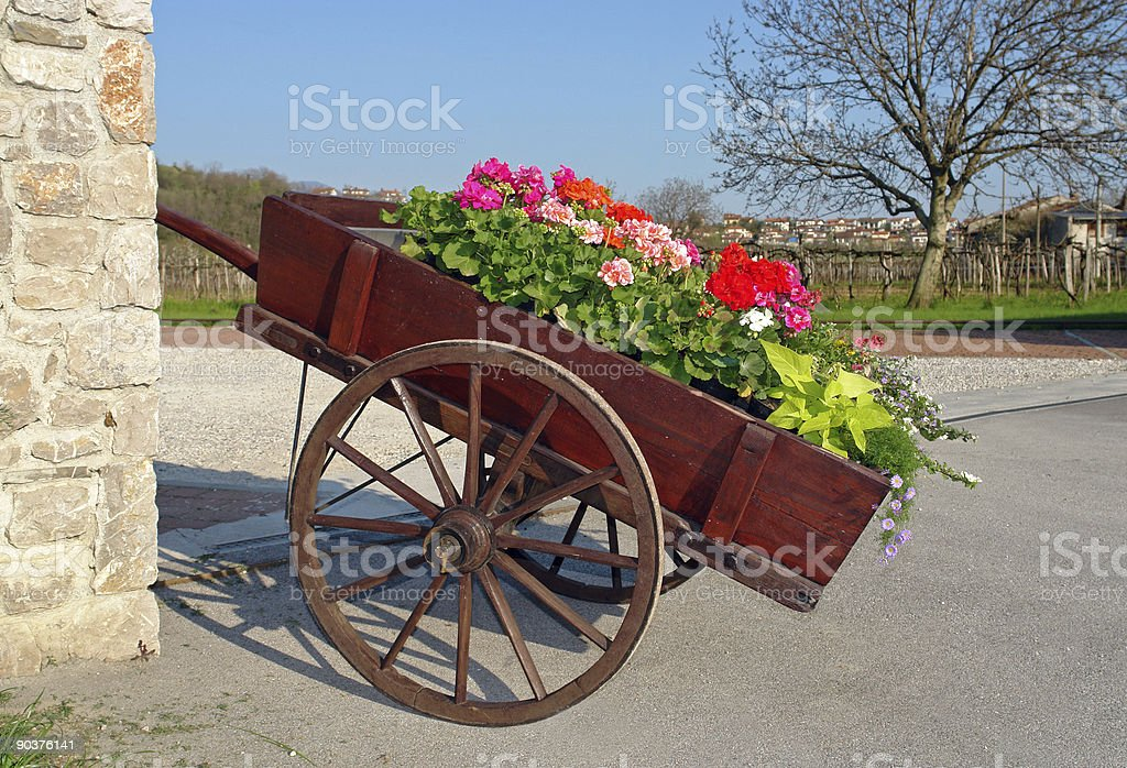 Carriage full of roses royalty-free stock photo