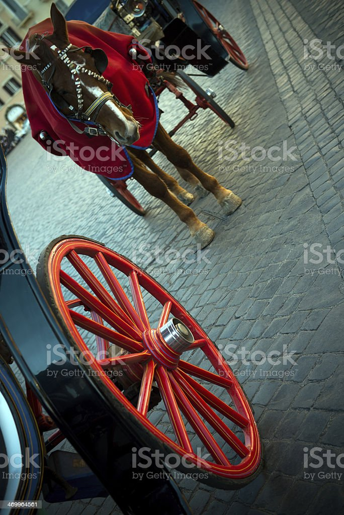 Carriage horse and wheels stock photo