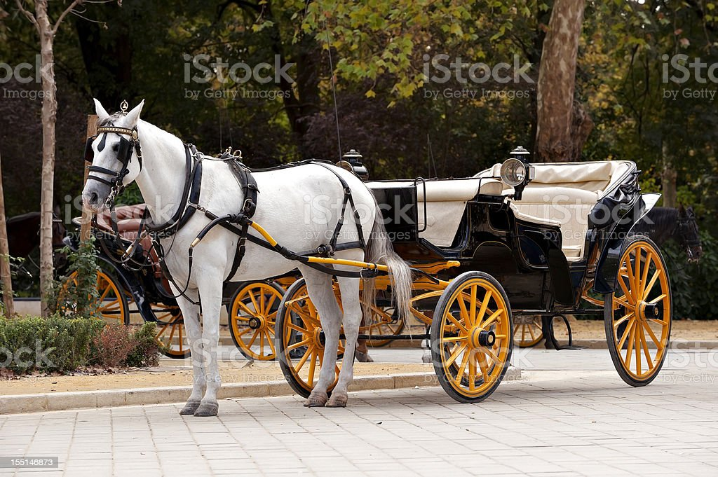 Carriage stock photo