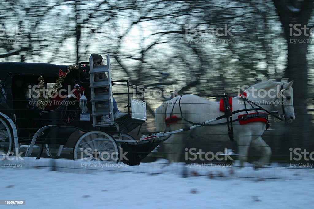 Carriage Ride in Central Park Snow stock photo