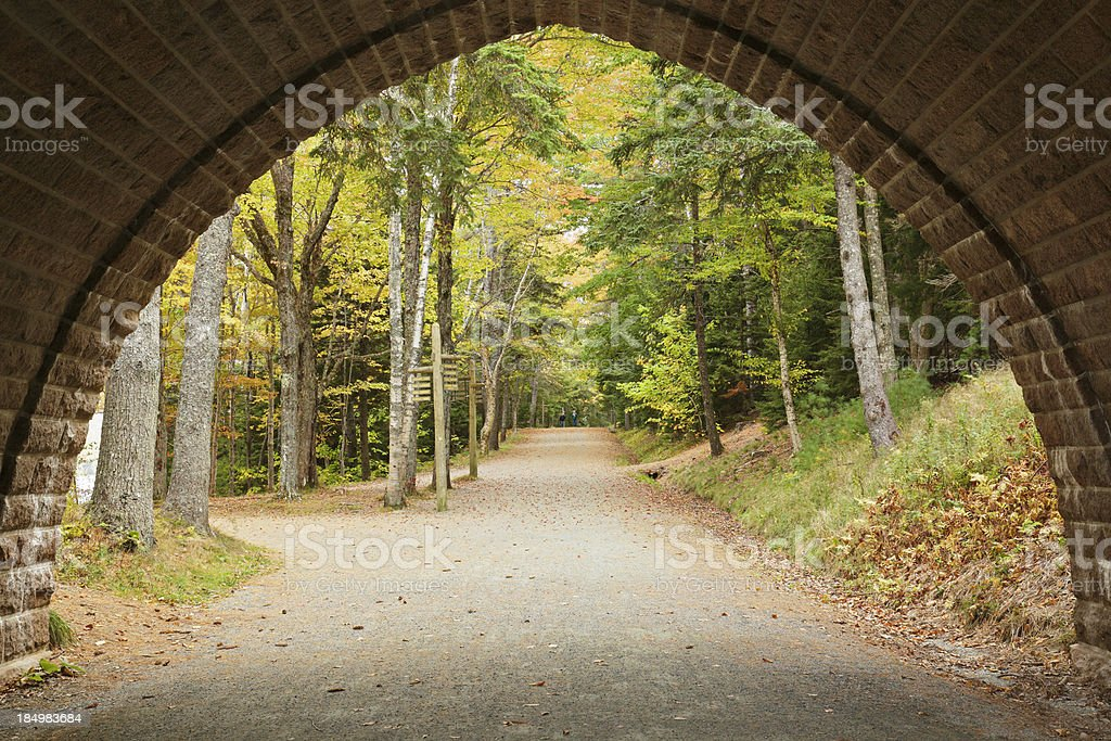 Carriage Road royalty-free stock photo