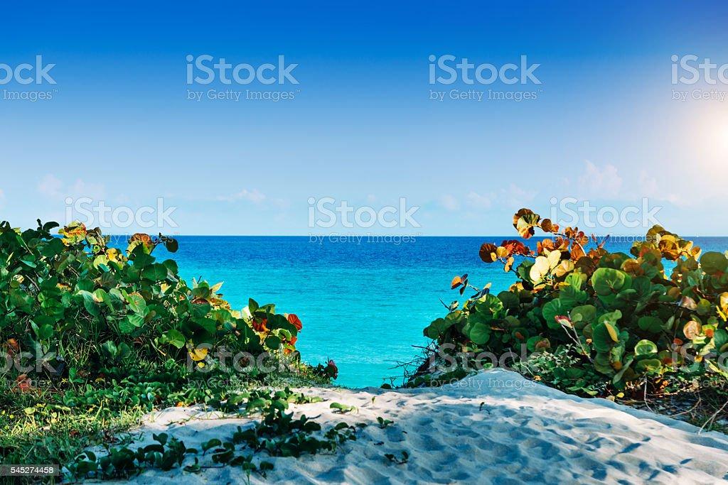 Carribean Sea Beach, Cuba stock photo