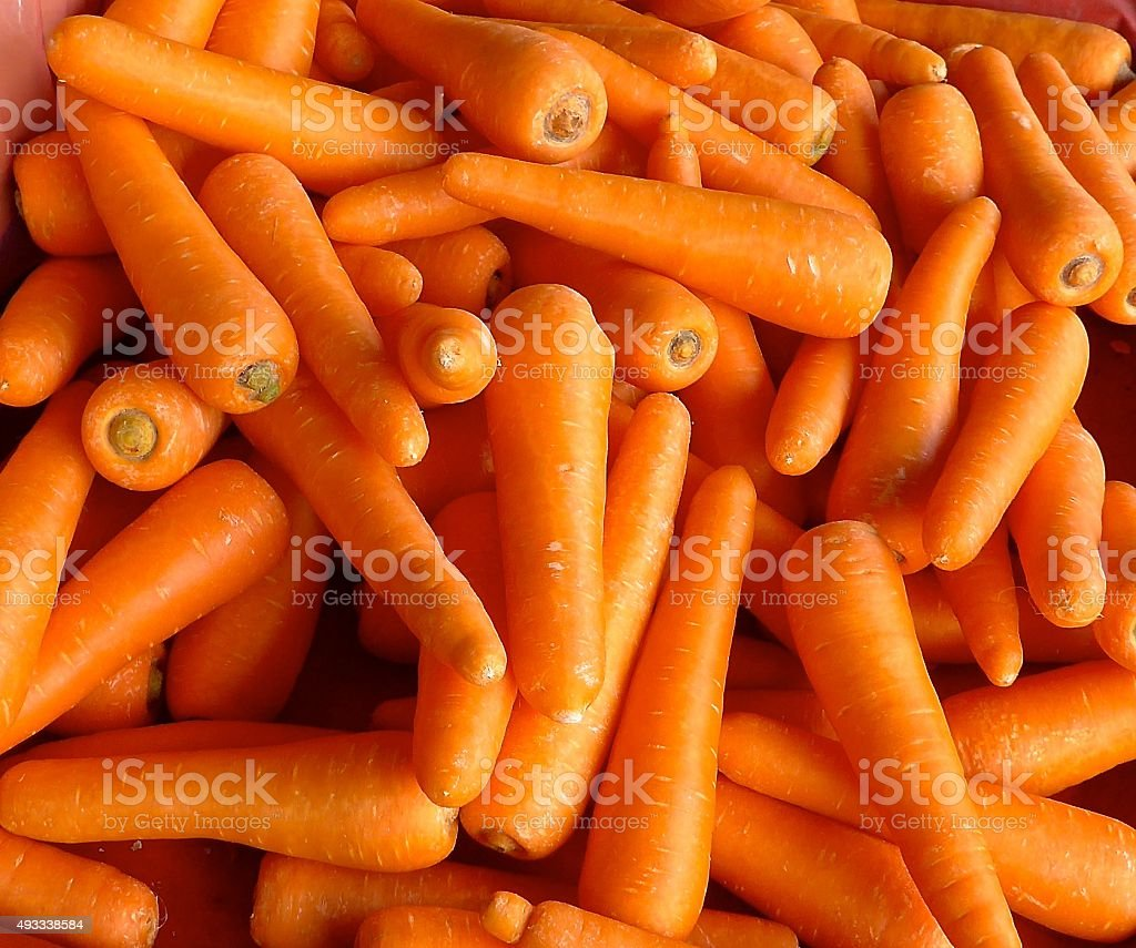 Carrot background stock photo