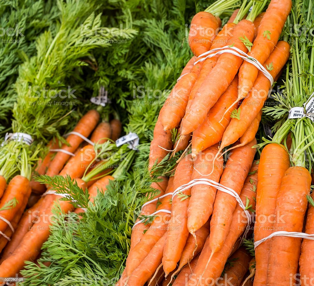 Carrot bunches stock photo