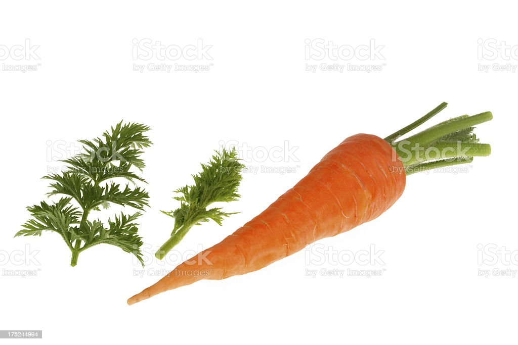 Carrot Heap with Leaves royalty-free stock photo