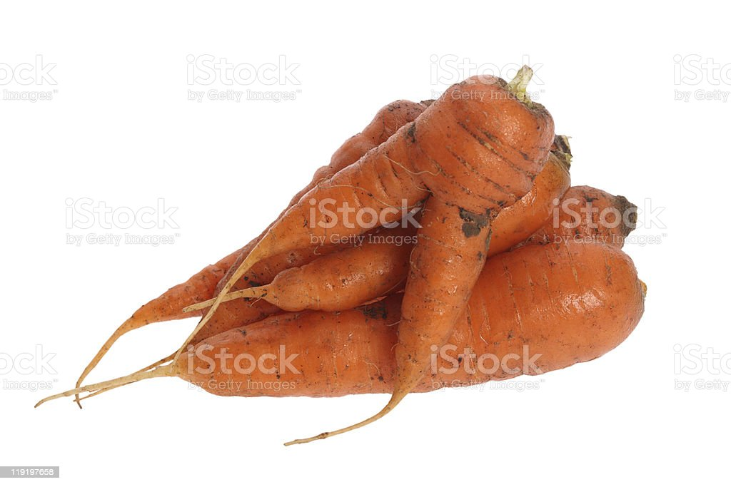 carrot isolated on a white background stock photo