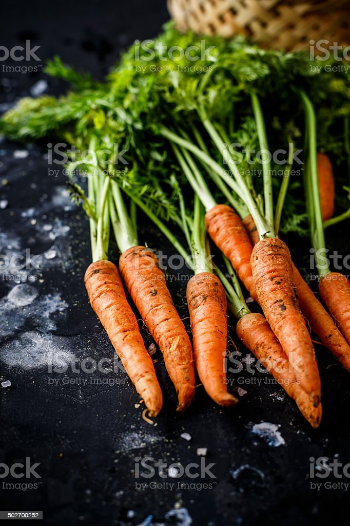 carrot on the black background stock photo