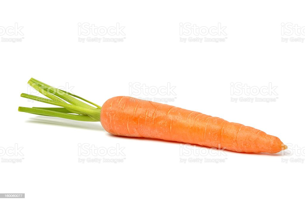 Carrot on White stock photo