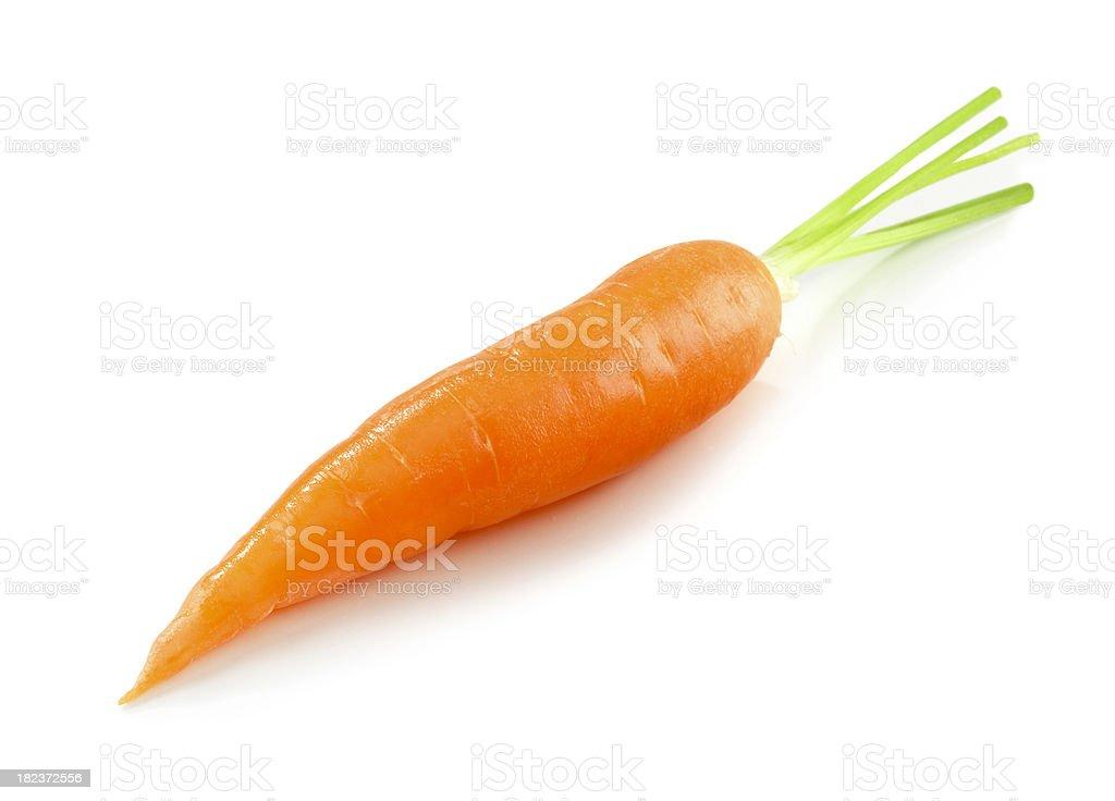 Carrot single royalty-free stock photo