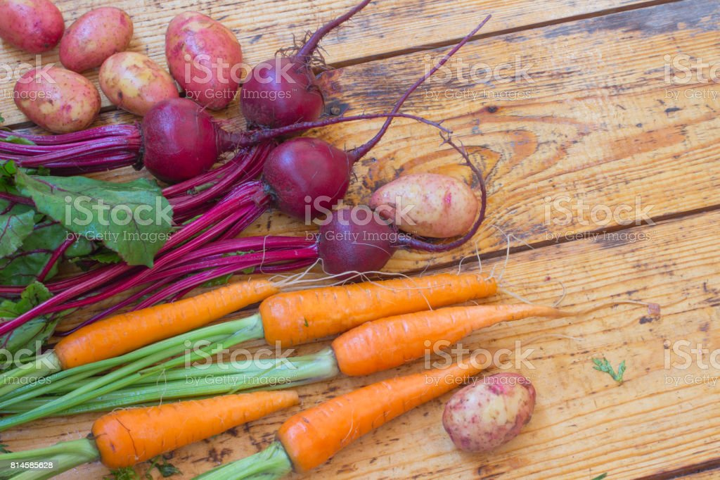 Carrots and beets with stems and leaves, fruits of potatoes. Top view. Wooden background stock photo