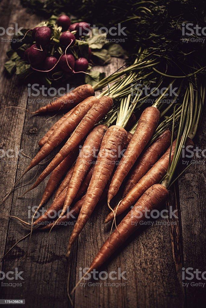 Carrots and radishes stock photo
