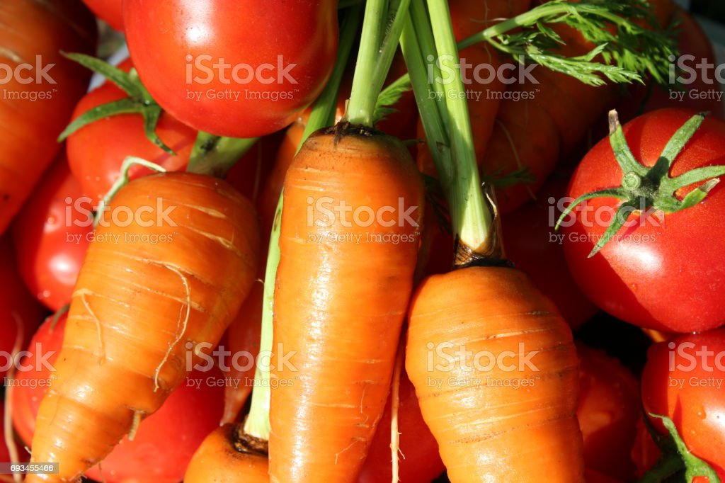 carrots and tomatoes stock photo