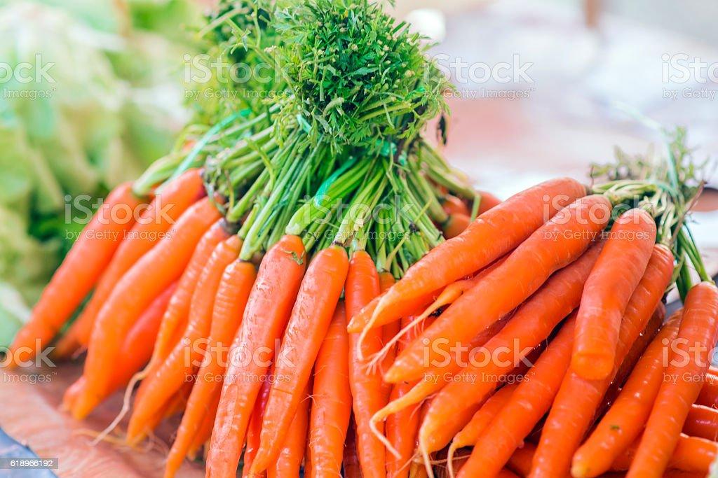 Carrots. Fresh organic carrots. Fresh garden carrots. stock photo