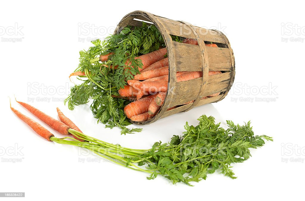 Carrots In a Tipped Rustic Basket royalty-free stock photo