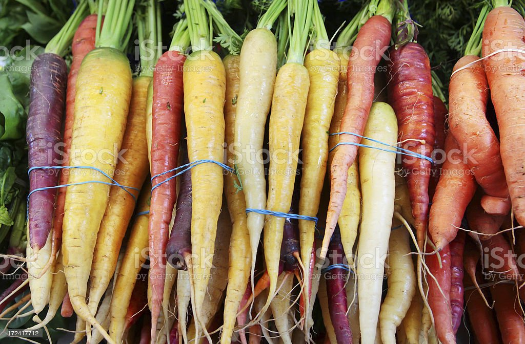 Carrots in bundles at the market. stock photo
