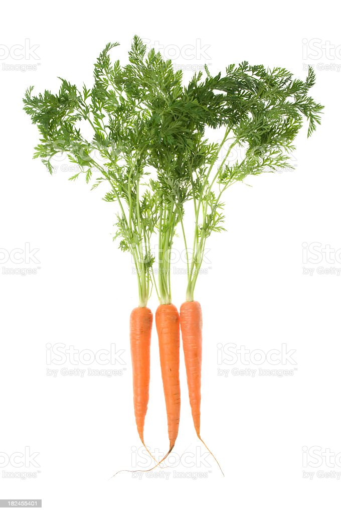Carrots isolated on white stock photo