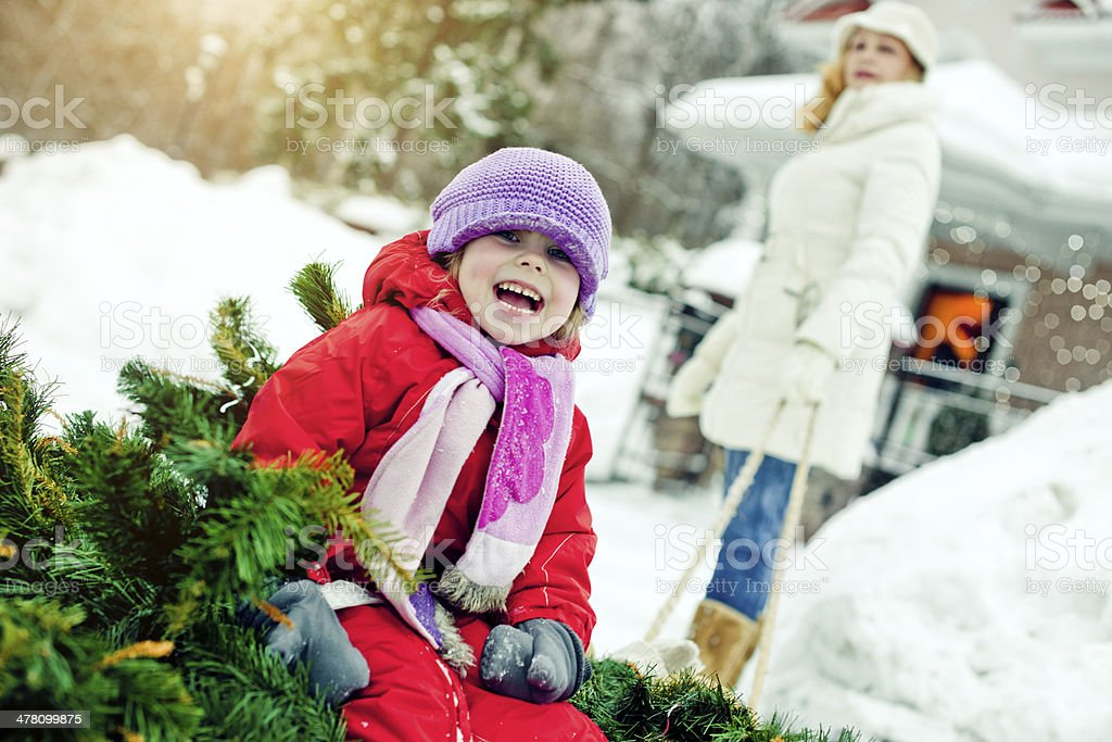 Carrying Christmas tree to home royalty-free stock photo