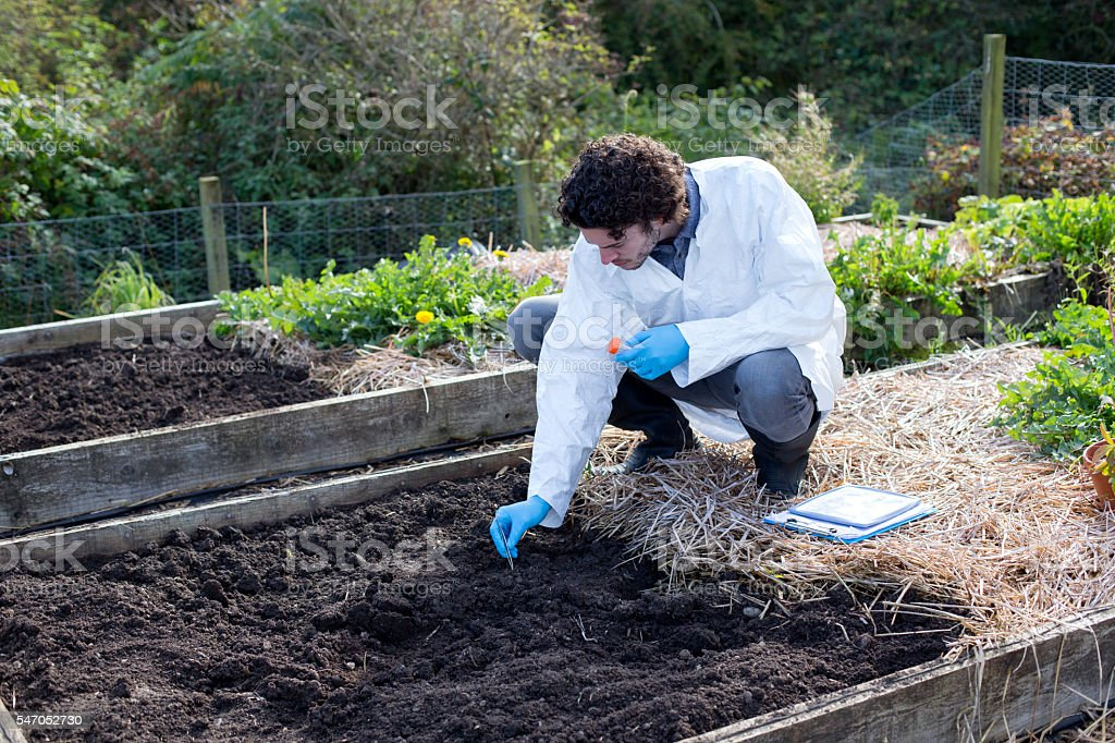 Carrying out a soil analysis stock photo