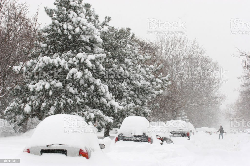 Cars covered with Snow in a Montreal City Street royalty-free stock photo