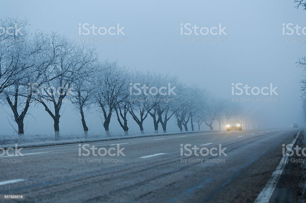 Cars with turned on headlights at road on foggy morning stock photo