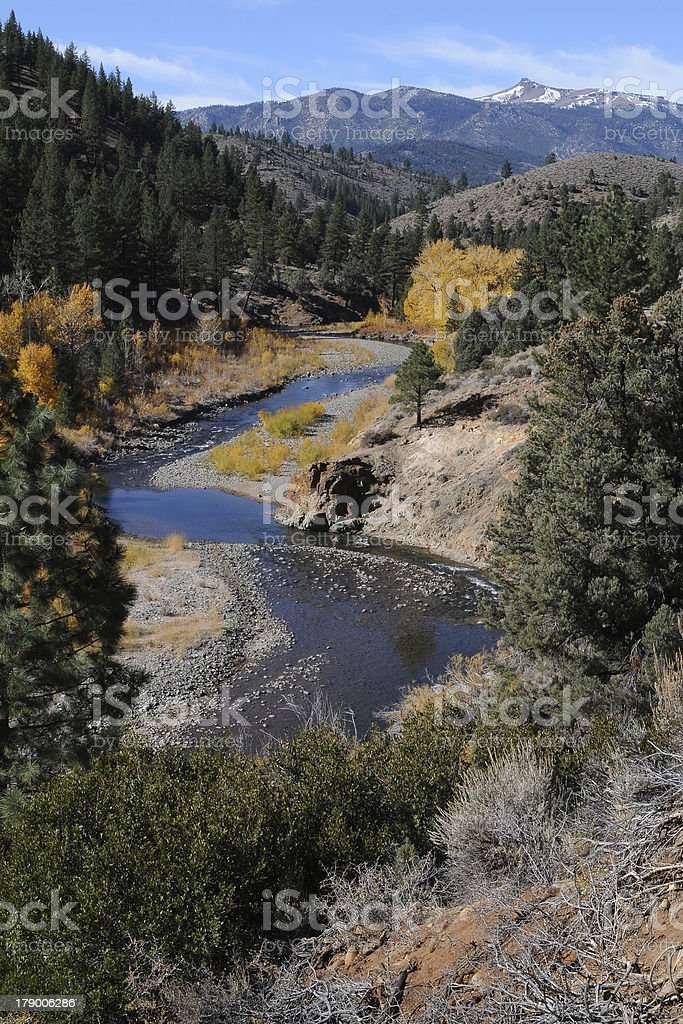 Carson River Landscape Vertical royalty-free stock photo