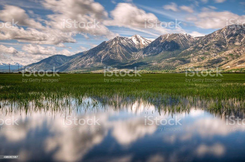 Carson Valley Reflection stock photo
