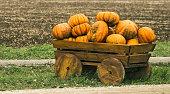 cart laden by pumpkins