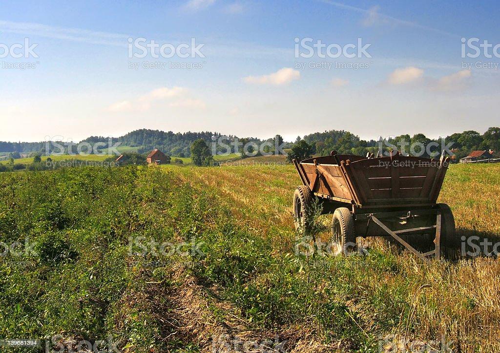 cart on field stock photo