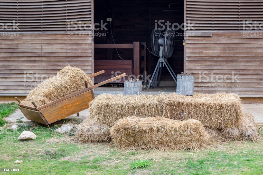 Cart with rick straw on grass stock photo