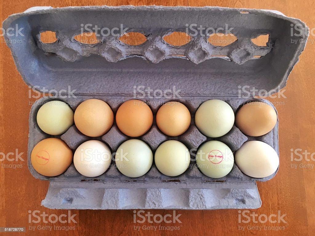 Carton of free range eggs stock photo