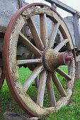 Cart-wheel.