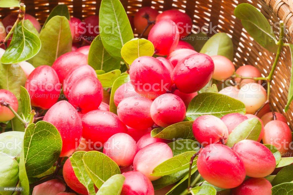 Carunda or Karonda fruits in the basket stock photo