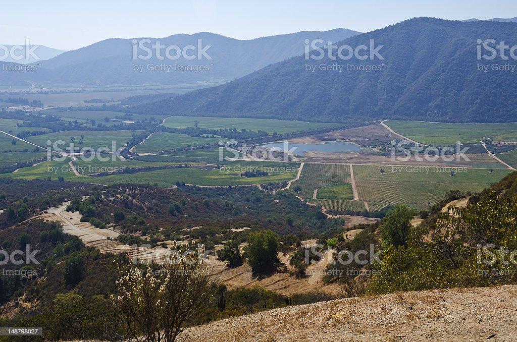 Casablanca Valley in Chile stock photo