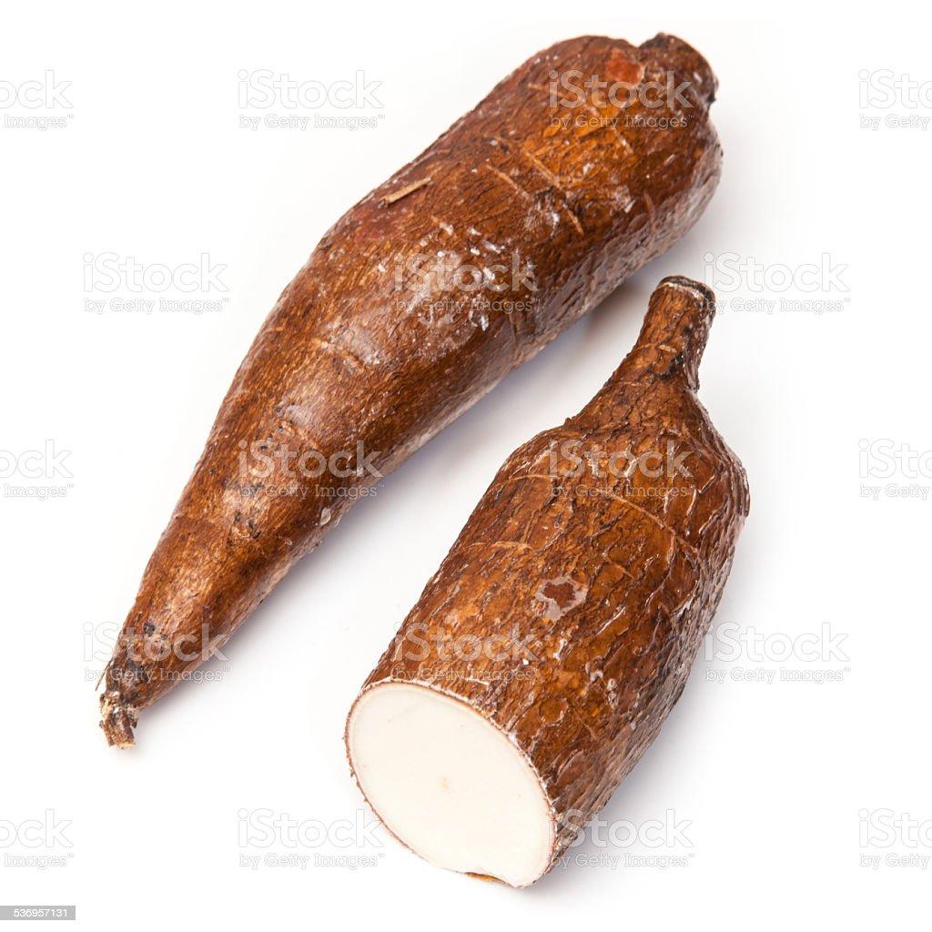 Casava root vegetable stock photo